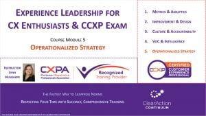 CX Strategy Training