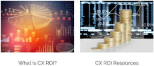 what is cx roi