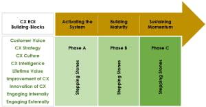 CX ROI Building Blocks Maturity