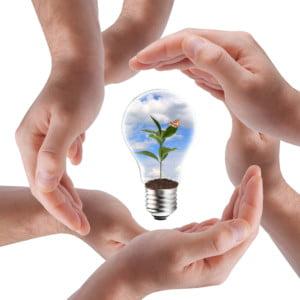 customercentric innovation