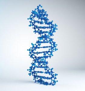Customer Centricity DNA